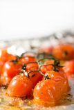 Roasted Cherry Tomatoes Stock Image