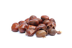 Roasted chestnut Royalty Free Stock Photography