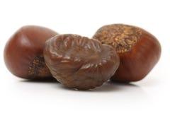 Roasted chestnut. Chinese food, peeled roasted chestnut on white background stock image