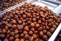 Roasted chestnut Stock Photography