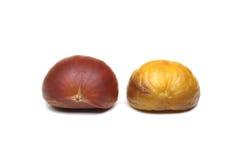 Roasted Chestnut Royalty Free Stock Photos