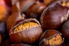 Roasted chestnut. Macro roasted chestnut for food background royalty free stock photo