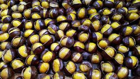 Roasted Chestnut. Pile of roasted chestnut royalty free stock images