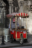 Roasted chestnut vendor, Istanbul. Roasted chestnut vendor in the street of Istanbul, Turkey. Photo taken at 21st of Mai 2011 royalty free stock image