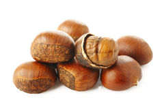 Roasted chestnut on white background Stock Images