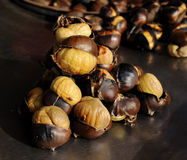 Free Roasted Chestnuts Stock Images - 13348664