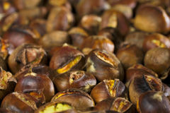 Roasted chestnuts. Lots of roasted chestnuts as a background Stock Image