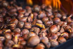 Roasted chestnuts. Detailed view of roasted chestnuts Royalty Free Stock Photography