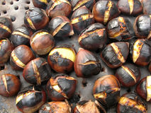 Roasted chestnuts. Chestnuts roasting, blacked and bursting open, from a street vendor in autumn Royalty Free Stock Photo