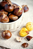 Roasted chestnuts in bowl Royalty Free Stock Image