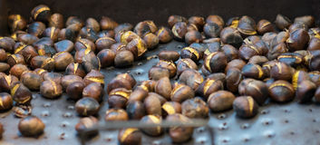 Roasted chestnuts cooling on a tray Royalty Free Stock Photography