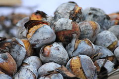 Roasted chestnuts in Lisbon Stock Photography