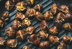 Roasted chestnuts over black cast iron grilling pan surface stock photography