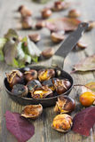Roasted chestnuts. Stock Photography