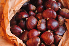 Roasted chestnuts ready to eat on crafted paper Royalty Free Stock Image