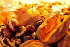Roasted chestnuts and sweet potatoes Stock Images