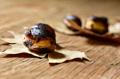 Roasted chestnuts, typical snack in All Saints Day in Catalonia, Stock Images