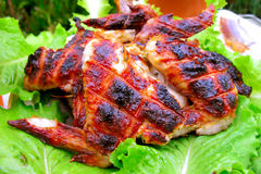 Roasted chicken. On the leafs lettuce royalty free stock photos