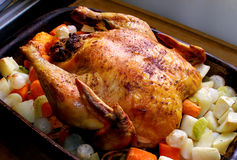 Roasted Chicken. Whole roasted chicken with vegetables in the roasting pan Stock Image
