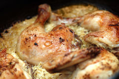 Roasted chicken. On drip pan Stock Photos