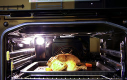 Roasted chicken. Cooking, grilled in an electric oven Royalty Free Stock Photo