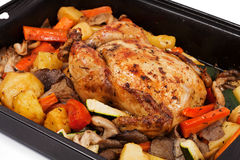Roasted chicken with assortment of vegetables. Potatoes, onions, mushrooms, carrots and zucchini Stock Image