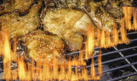 Roasted chicken on barbecue grills Stock Photography