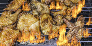 Roasted chicken on barbecue grills Royalty Free Stock Image