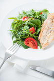 Roasted chicken breast and fresh salad with tomato and greens Stock Image