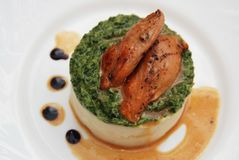 Roasted Chicken Breast and Mashed Potatoes with Spinach Sauce in White Plate. top view. Stock Image