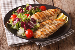 Roasted Chicken breast with mix salad of chicory, tomatoes and l Stock Image