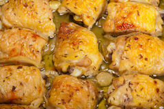 Roasted chicken breast rolls Stock Photography