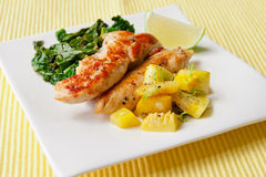 Roasted chicken breast with saute kale and squash vegetables Royalty Free Stock Image