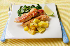 Roasted chicken breast with saute kale and squash vegetables Royalty Free Stock Photography