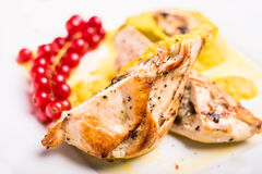 Roasted chicken breast stuffed with champignon mushrooms served with vegetable puree and red currant isolated on white background Stock Images