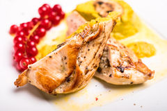 Roasted chicken breast stuffed with champignon mushrooms served with vegetable puree and red currant isolated on white background Stock Photography