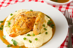 Roasted chicken breast with wing and with mashed potatoes Royalty Free Stock Photography