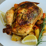 Roasted chicken with carrots,potatoes, tomatoes with dash of lime Stock Images