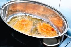 Roasted chicken cutlets Stock Image