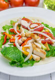 Roasted chicken fillet on wheat tortilla with salad of fresh vegetables. And sauce Stock Image