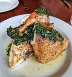 Roasted Chicken. With fresh herbs royalty free stock photos