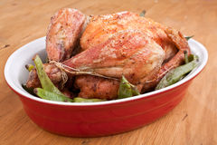 Roasted chicken with green beans Stock Image