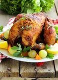 Roasted chicken with herbs Stock Images