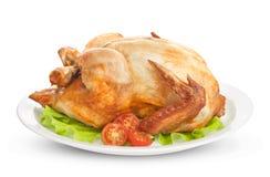 Roasted chicken isolated on white background Stock Image