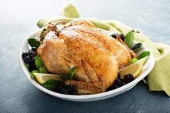 Roasted chicken for holiday or sunday dinner. Roasted chicken with lemon and herbs for holiday or sunday dinner Royalty Free Stock Images