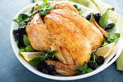 Roasted chicken for holiday or sunday dinner. Roasted chicken with lemon and herbs for holiday or sunday dinner Royalty Free Stock Photos