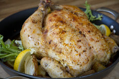 Roasted chicken lemon in a pan stock photography