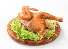 Roasted chicken with lettuce Stock Images
