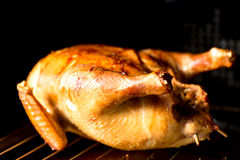 Roasted chicken in oven Stock Image