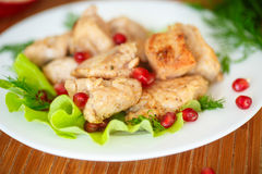 Roasted chicken with pomegranate seeds Stock Photography